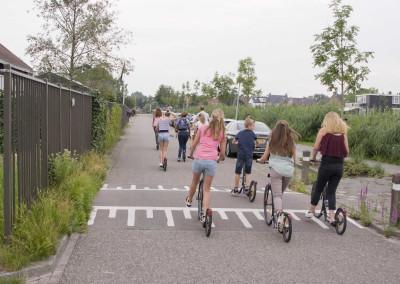 Steppen bij de Reeuwijkse plassen richting Gouda